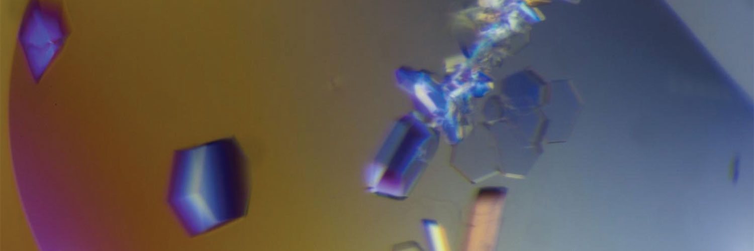Photo of crystals from the Mitochondrial Proteome Project